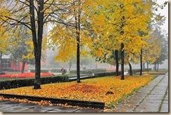 Осень в Висагинасе